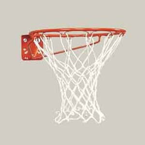 Picture of Bison Economy Basketball Goal