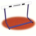 Picture of Stackhouse Junior Elementary Hurdle