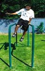 Picture of L.A. Steelcraft Classic Parallel Bars
