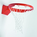 Picture of Athletic Connection Double Rim Front Mount Basketball Goal