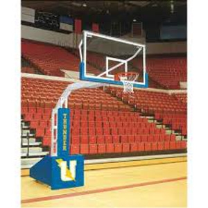Picture of Bison T-Rex Portable Basketball Systems