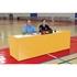 Picture of Bison School Spirit Activity Tables