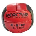 Picture of Champion Barbell Medicine Balls