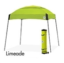 Picture of E-Z UP Dome Canopy Shelter 10' X 10' Limeade Top & Grey Steel Frame