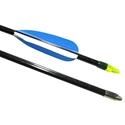 Picture of BSN Fiberglass Target Arrows