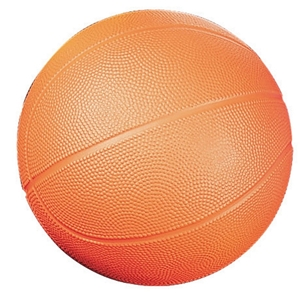 Picture of Champion Sports Coated High Density Foam Basketball