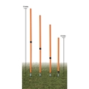 Picture of Champion Sports Adjustable Agility Pole Set