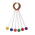 Picture of Champion Sports Swing Ball Set