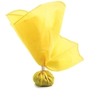 Picture of Official's Penalty Flag