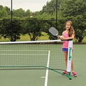 Picture of PickleBall Net