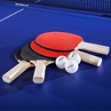 Picture of Champion Sports Four Player Table Tennis Table Set