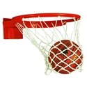 Picture of Bison Baseline Collegiate 180° Breakaway Basketball Goal