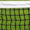 "Picture of Putterman ""Best"" Vinyl & Tapered Signature Tennis Net"