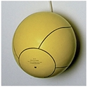 Picture of Stackhouse Tetherball