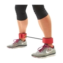 Picture of BSN Lateral Resistance Trainer
