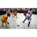 Picture for category Floor Hockey